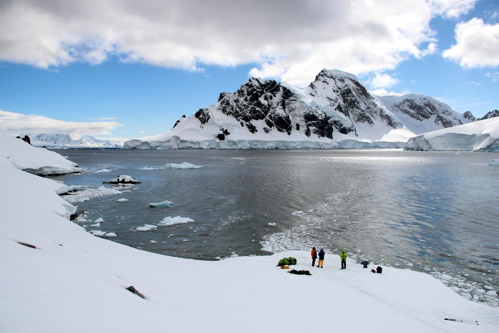 Orne Harbour Bucht Antarktis