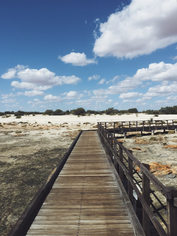 Hamelin Pool Stromatolithen Boardwalk
