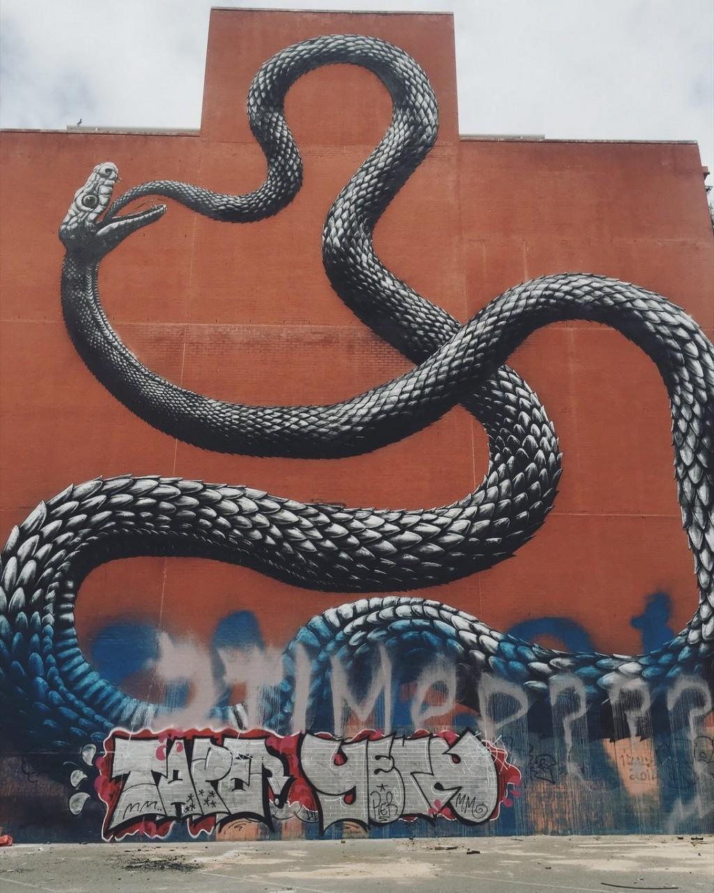 ROA Schlange Streetart Perth Australien