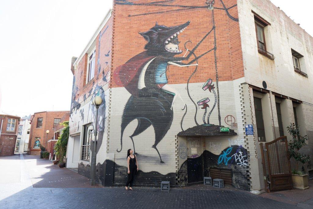 Streetart Wolf Lane Perth