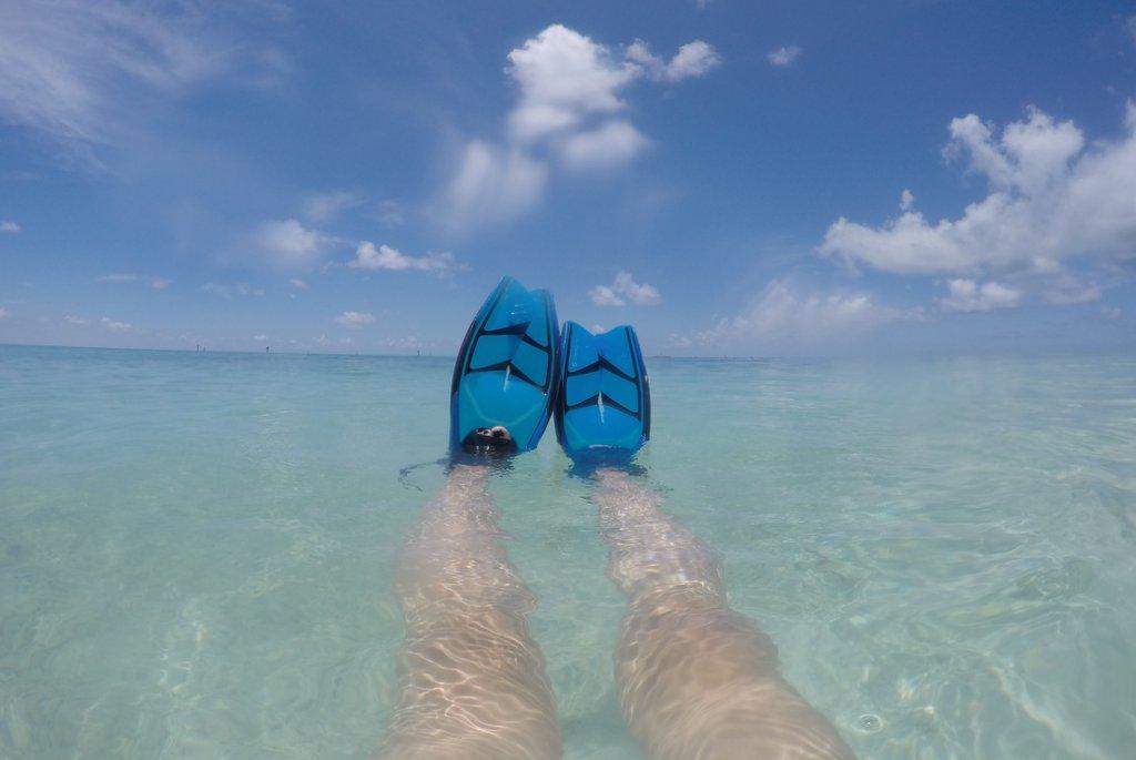 Schnorcheln-Key-West-Dry-Tortugas