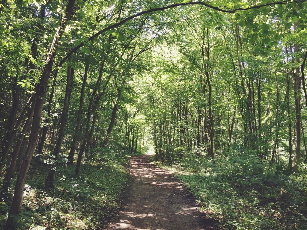 Wienerwald wandern Ausflugstipp Baden