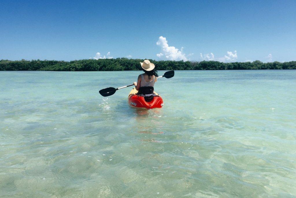 Florida-Keys-Kajaktour-Mangroven