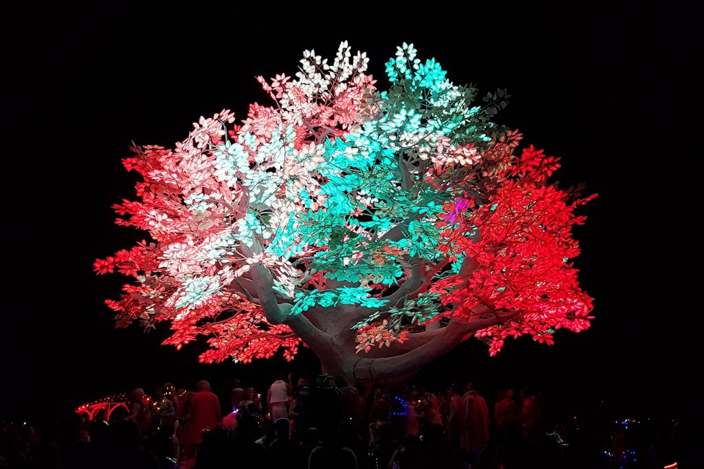Burning Man Tree of Tenere Baum Installation