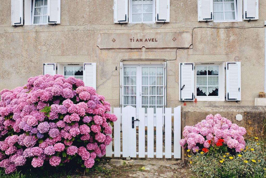 Ile-Molene-Bretagne-Finistere-Ausflug