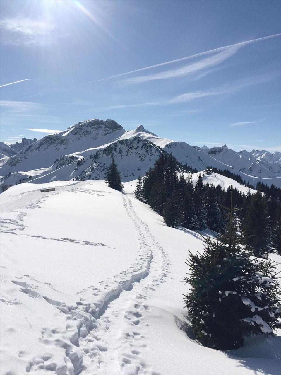 Tannheimer Tal Tirol Winterurlaub Tipp