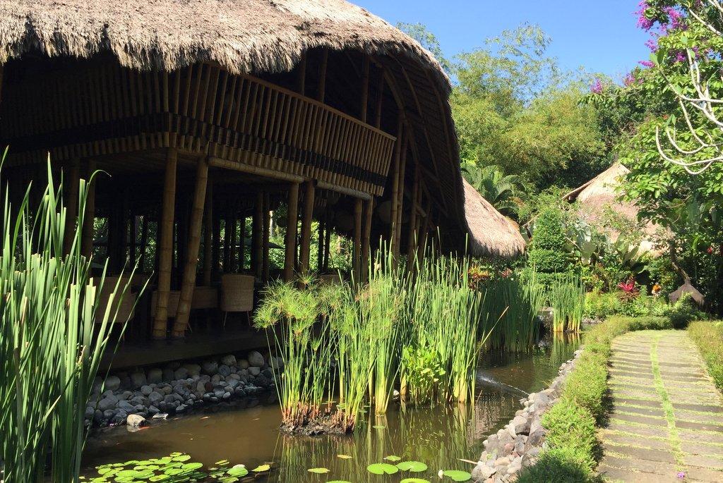 Fivelements Ubud beste Restaurants Bali