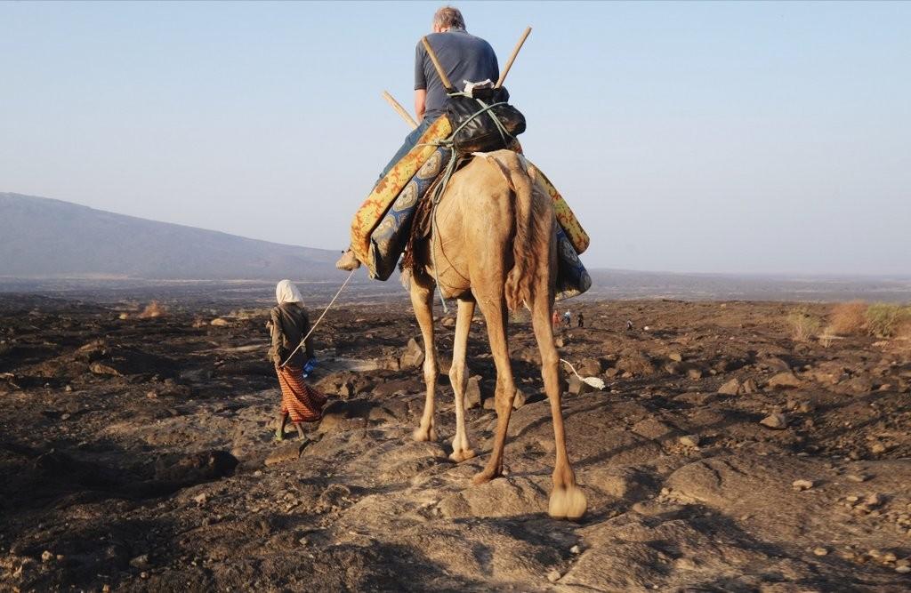Erta-Ale-Danakil-Besteigung-Kamel