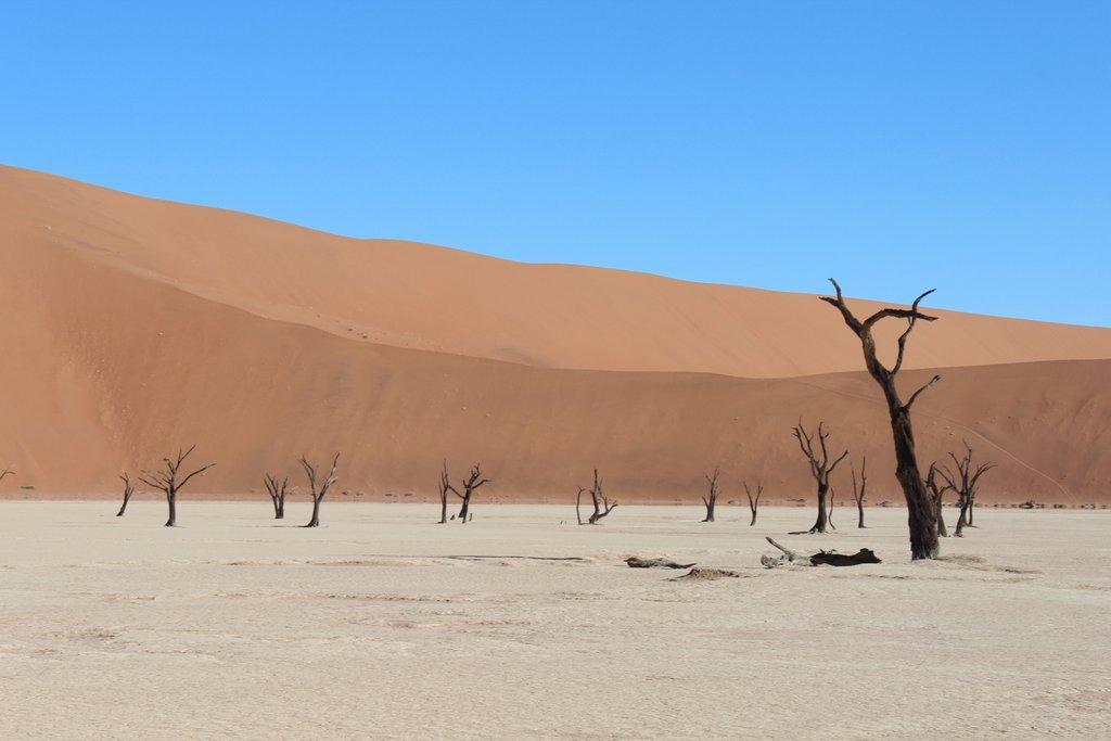 Dead Vlei Namibia Sehenswuerdigkeiten