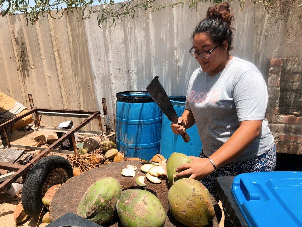 Aruba-frische-Kokosnuss-Geheimtipp