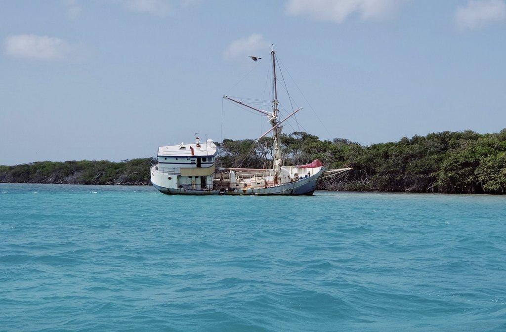 Schiffswrack-Aruba