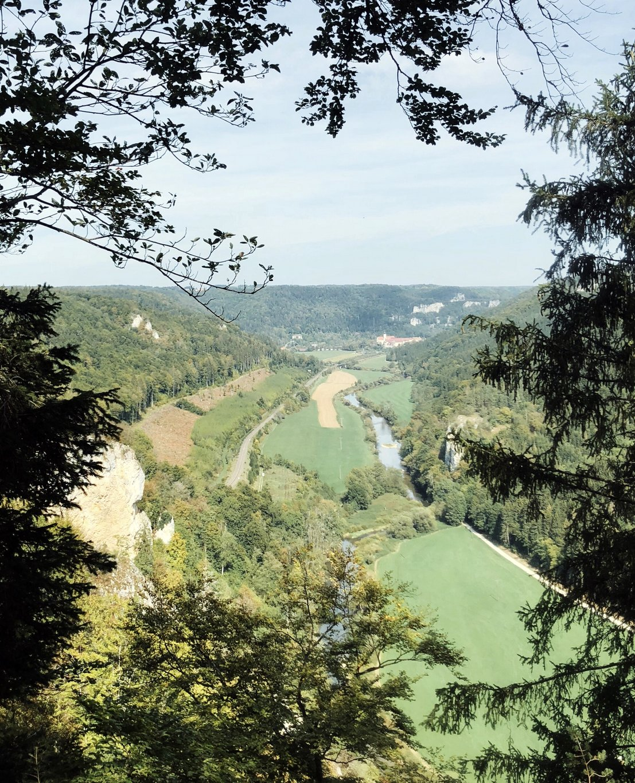 Donautal-Knopfmacherfelsen