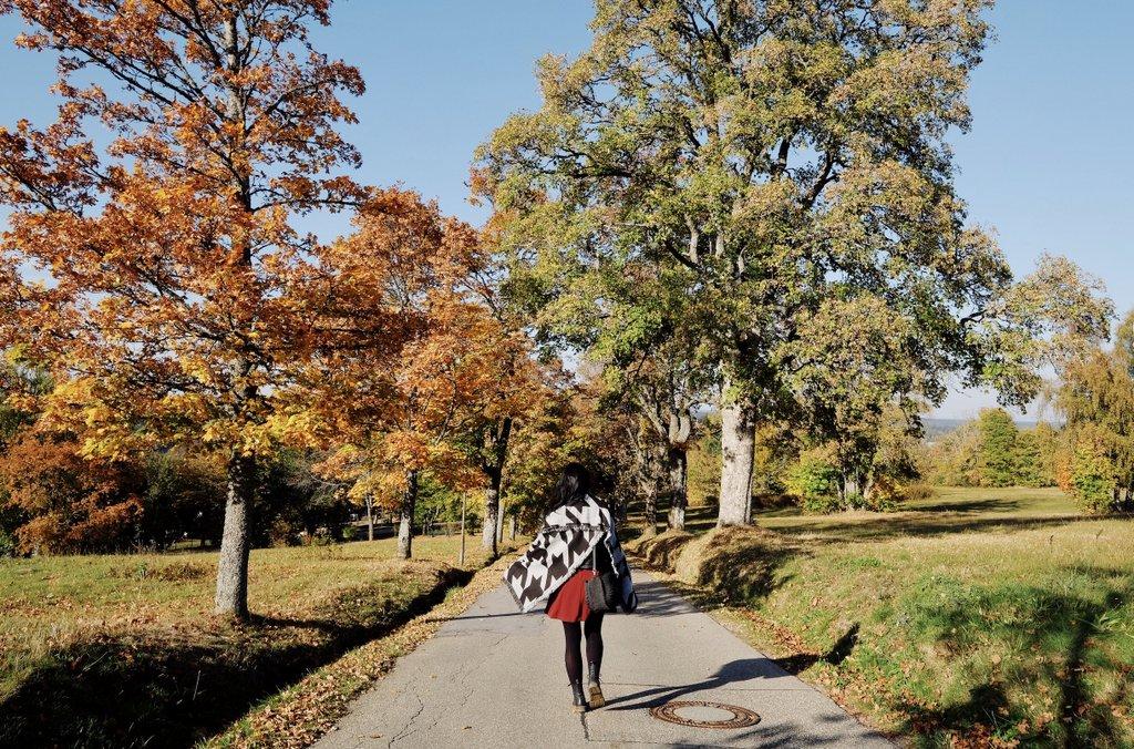 Kienberg-Freudenstadt-Schwarzwald-Tipps