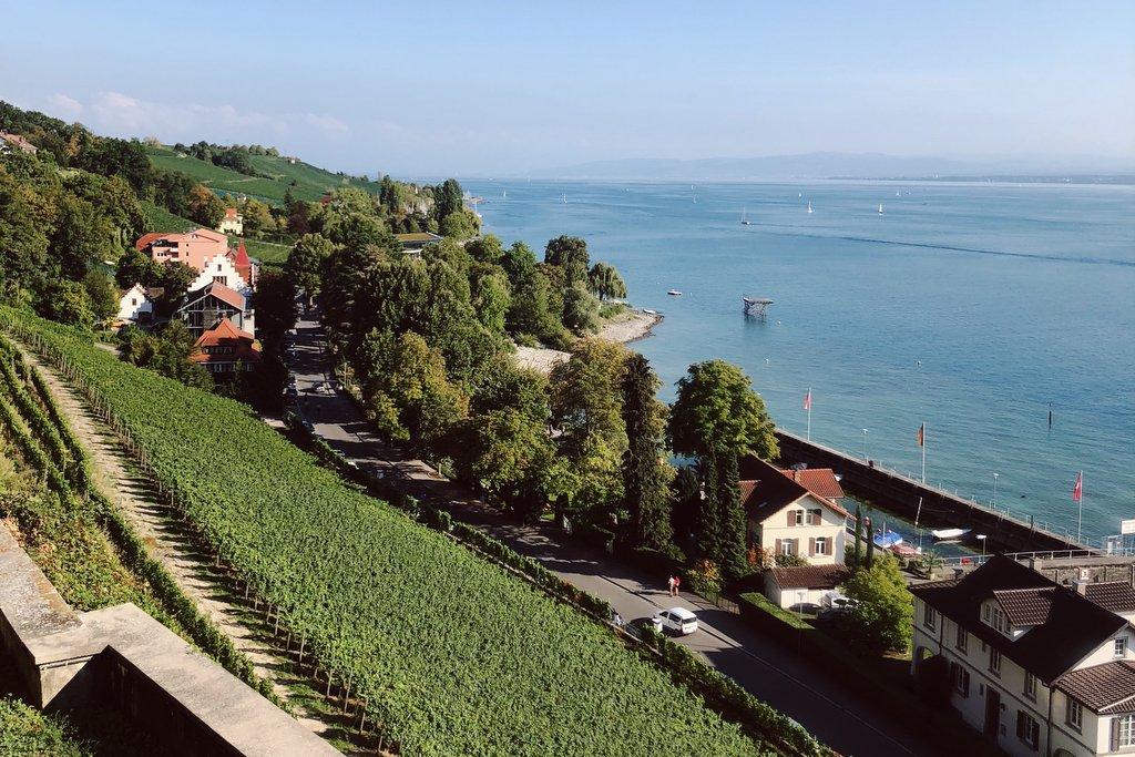 Meersburg-Bodensee-Weinberge