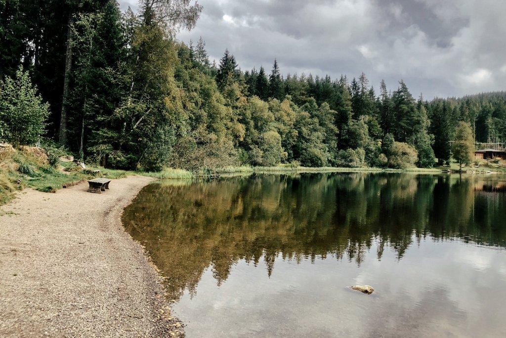 Schwarzwald-Geheimtipps-Windgfällweiher