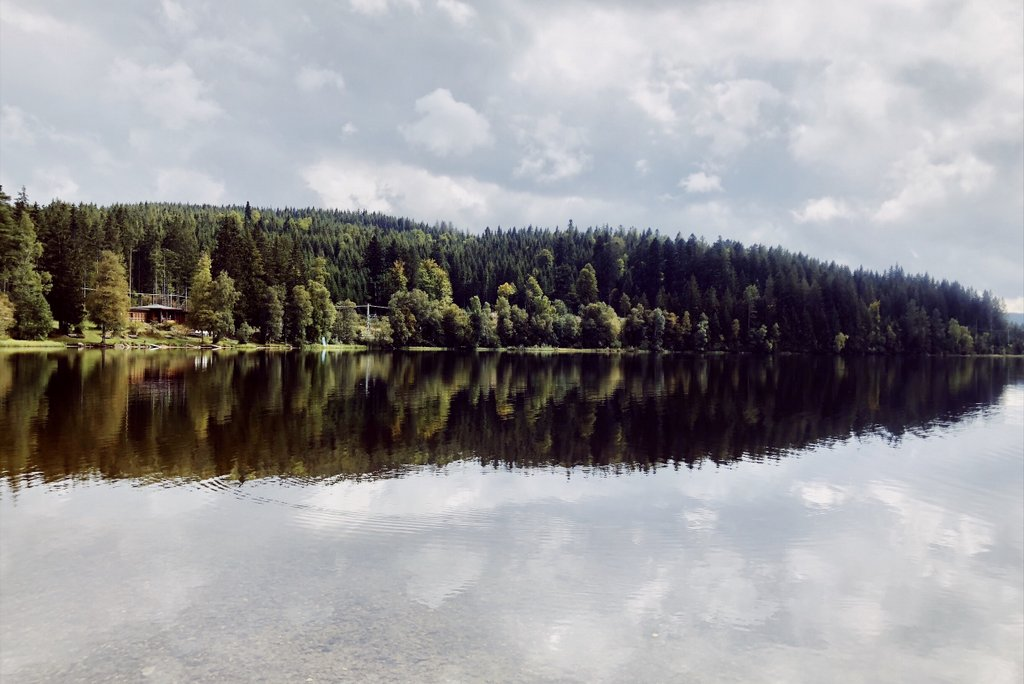 Schwarzwald-Kurztrip-Windgfaellweiher