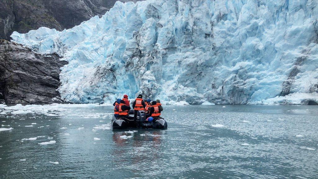 Condor-Glacier-Tierra-del-Fuego-Chile