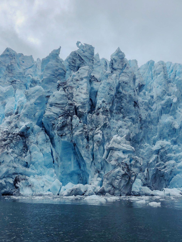 Condor-Gletscher-Alberto-de-Agostini-Nationalpark
