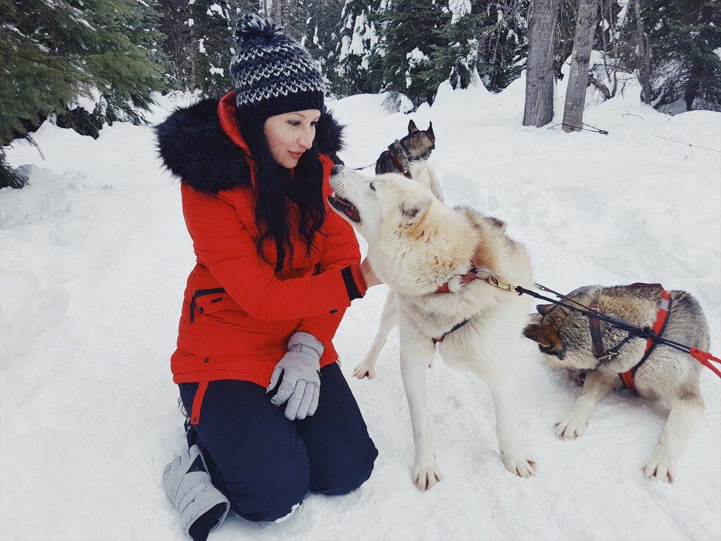 Hundeschlittenfahren-Jasper-Kanada-im-Winter
