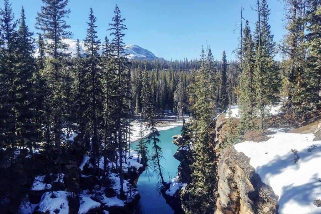 Sommerreisen - Jasper, Kanada