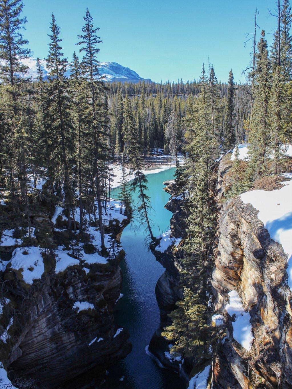 Jasper-Nationalpark-Sehenswuerdigkeiten-Athabasca-Falls