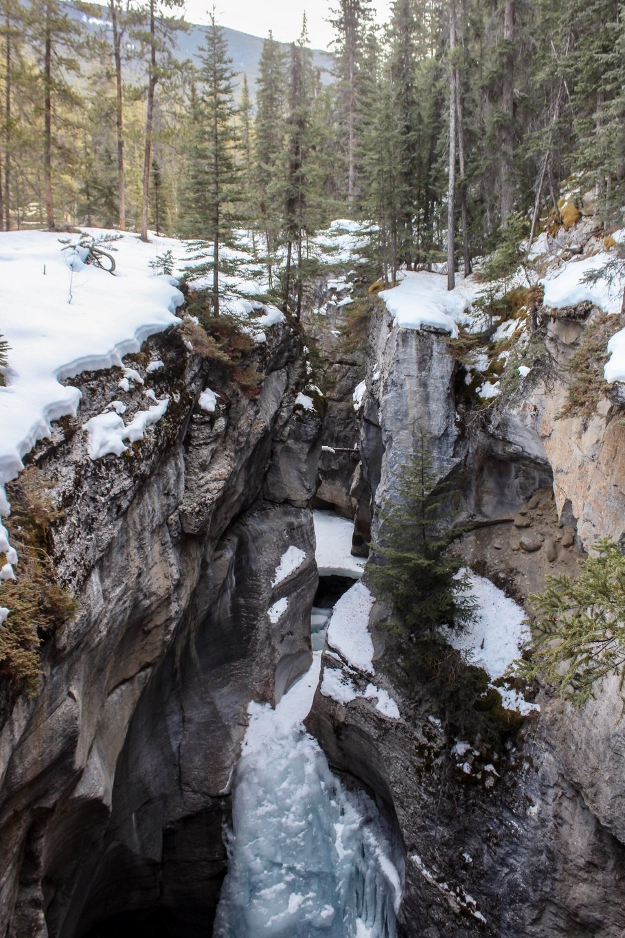 Maligne-Canyon-Jasper-Nationalpark-Sehenswuerdigkeit