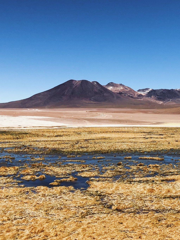 Reise-Atacama-Wueste-Chile