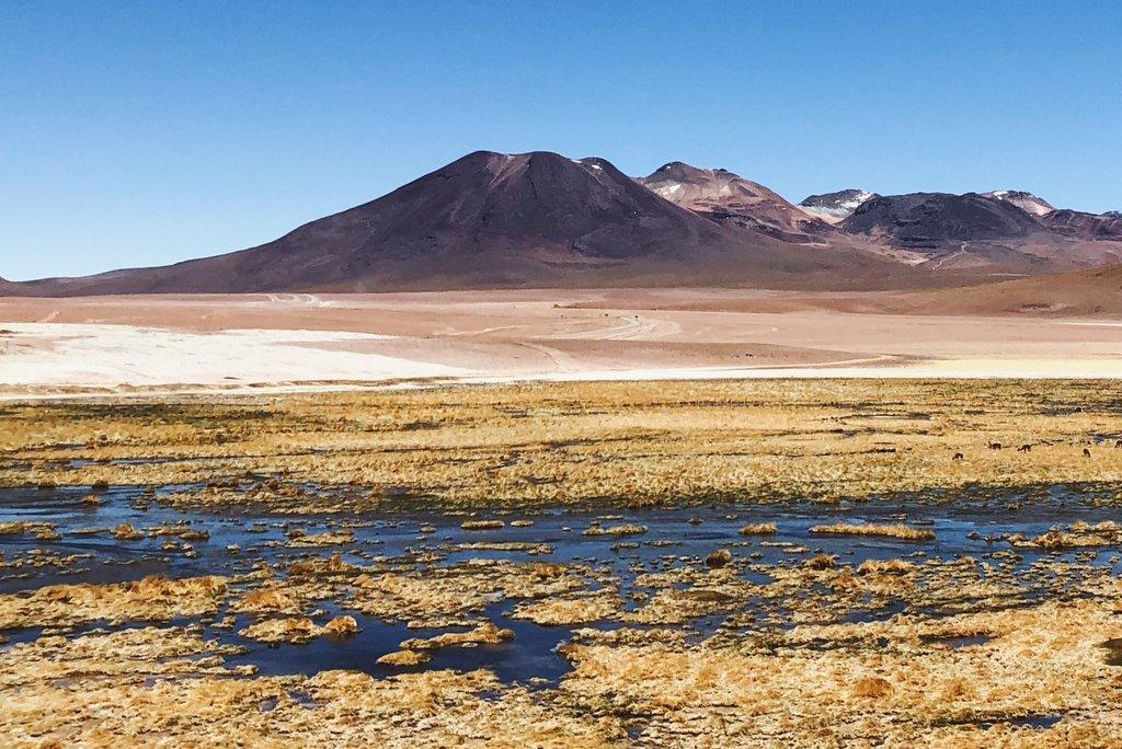Träum dich in die Ferne: Chile