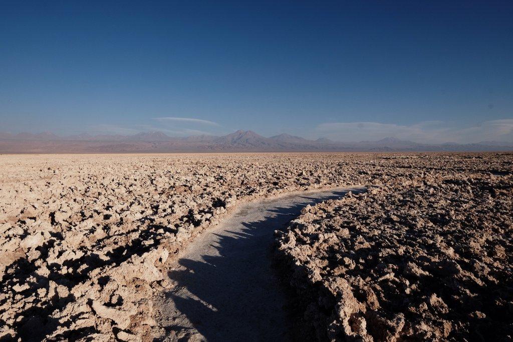 Salar-de-Atacama