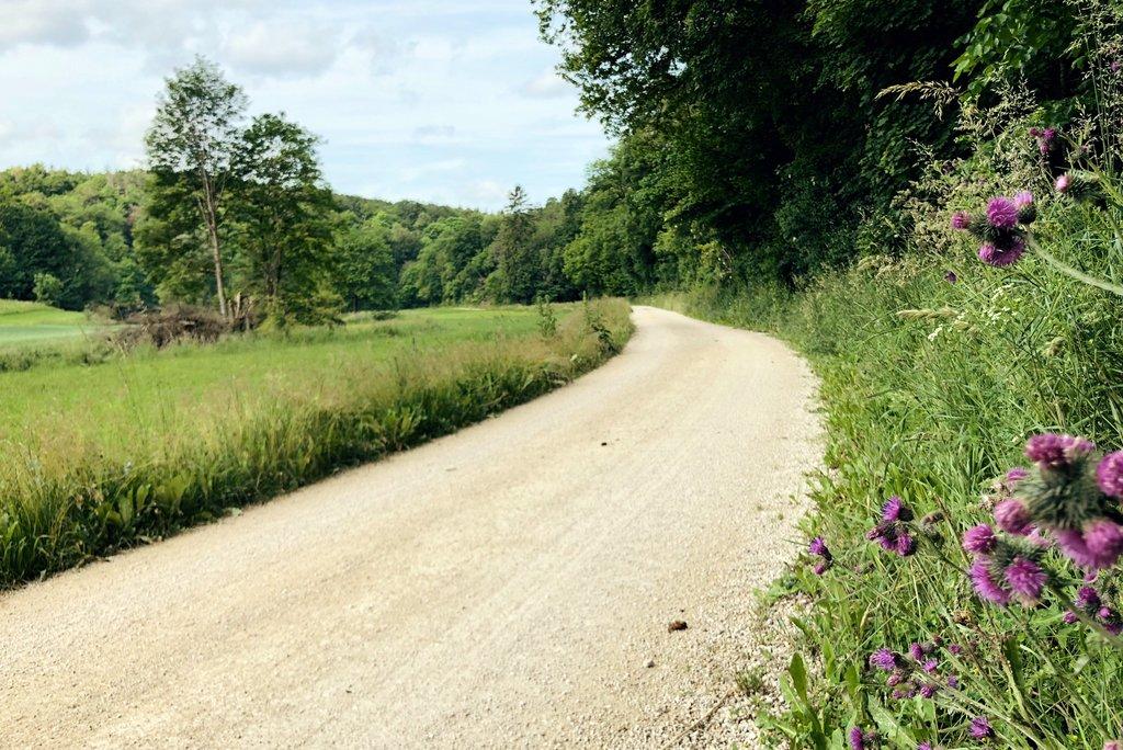 Grosses-Lautertal-wandern-Burgfelsenpfad