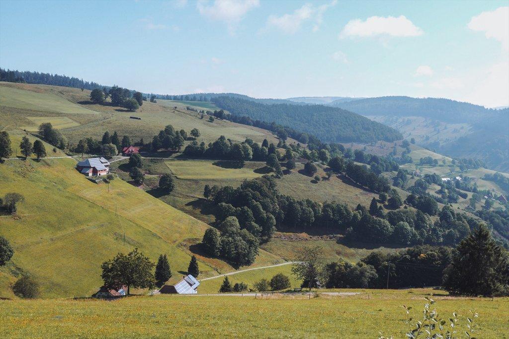 Belchen-Schwarzwald-Tipp