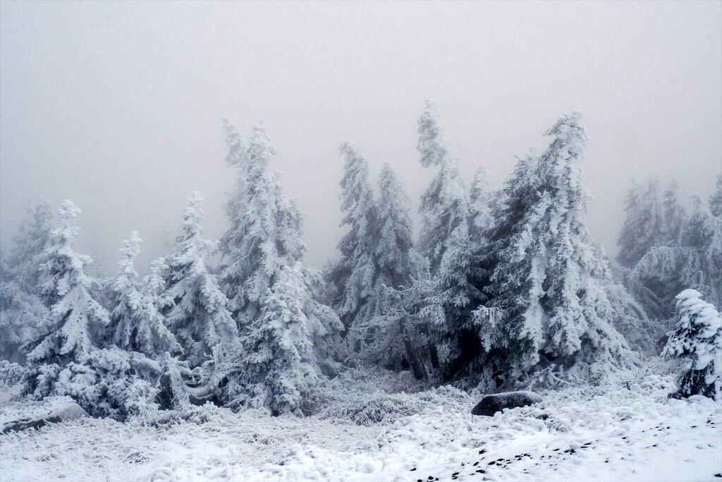 Brocken Harz im Winter