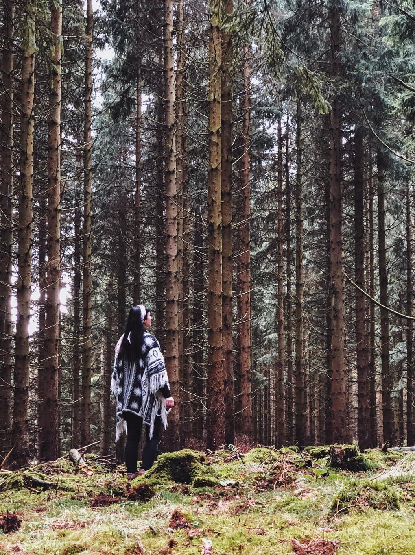 Harz wandern Nebensaison