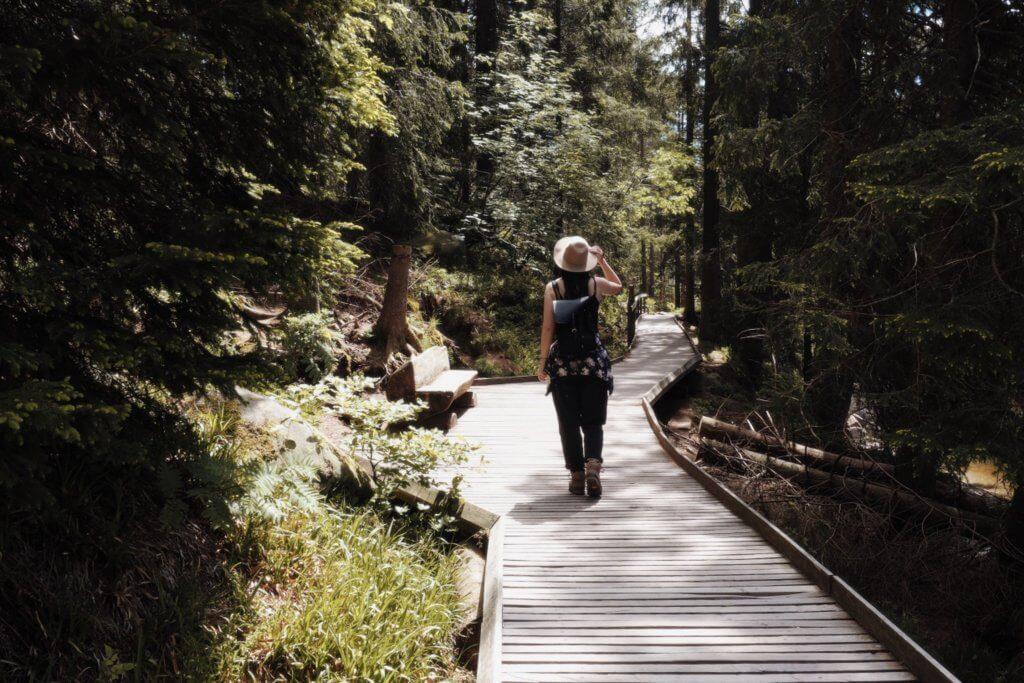 Wandern in Deutschland - Schwarzwald