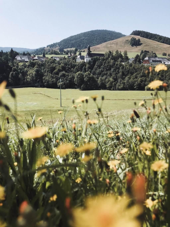 Schwarzwald Sommerurlaub