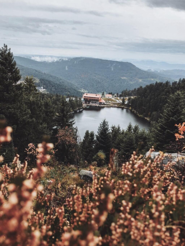 Schwarzwald Urlaub Tipps Mummelseeblick