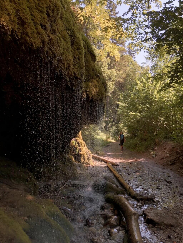Wutachschlucht Schwarzwald wandern