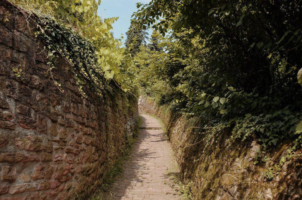 Heidelberg Geheimtipps Schlangenweg