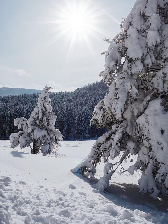 Balingen Winterlandschaft