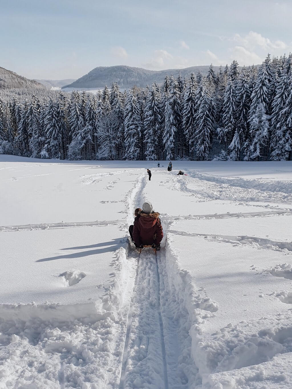 Schlittenfahren rodeln Schwäbische Alb