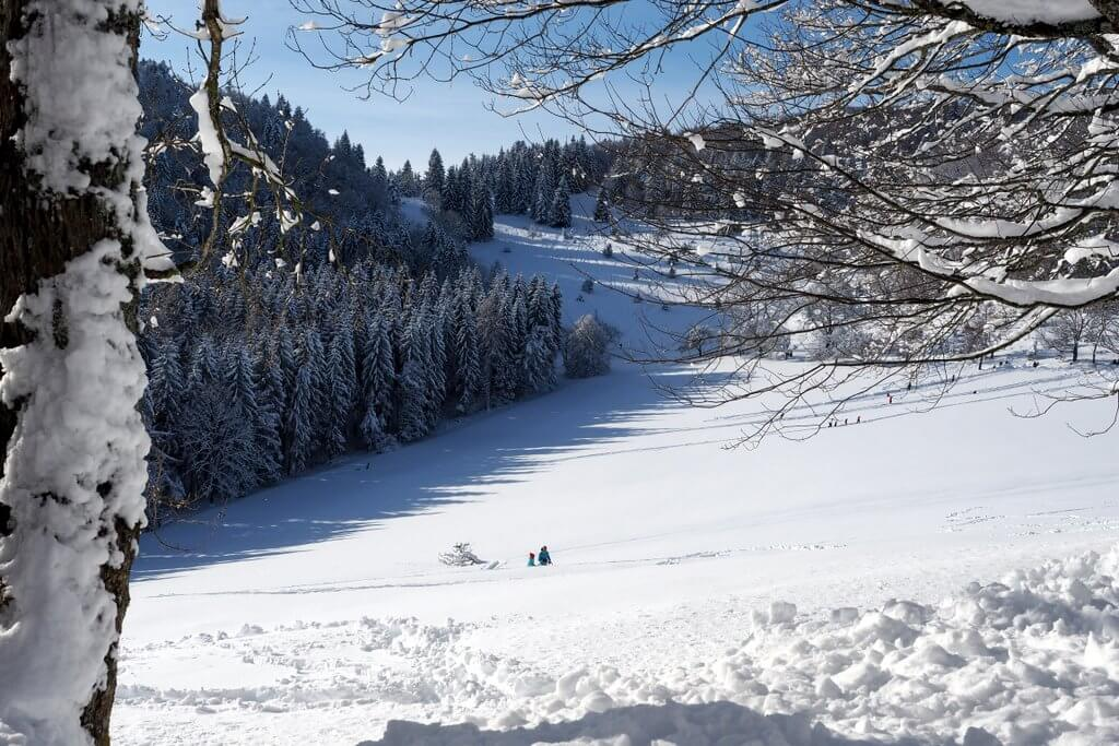 Winterlandschaft Schwäbische Alb