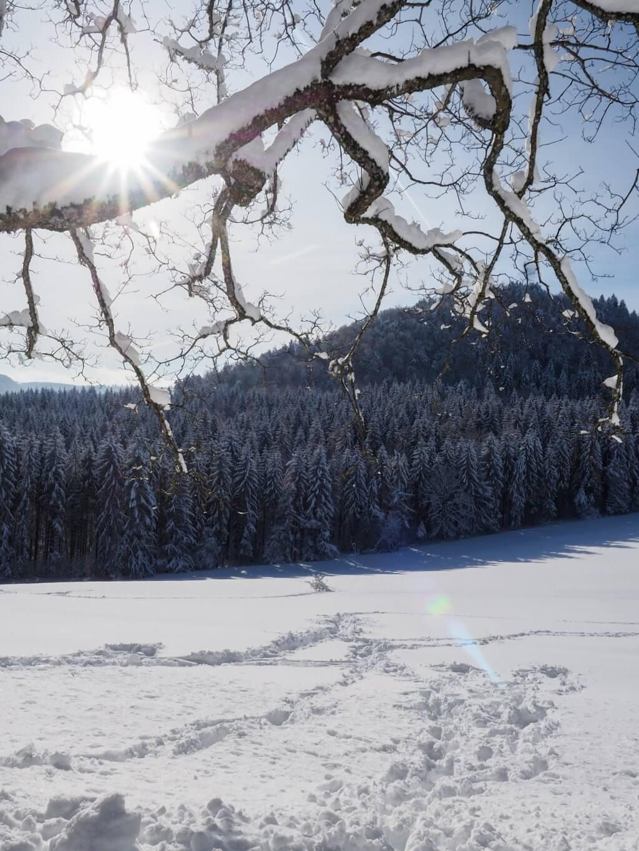 Wintersonne Schwäbische Alb