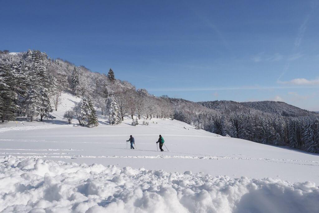 Winterwandern Lochen Balingen