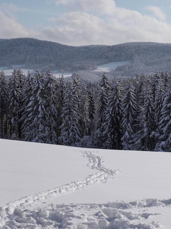 Winterwandern Schwäbische Alb
